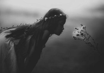pixabay fairy tale